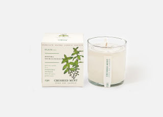 Add On Item: Crushed Mint Grow Candle