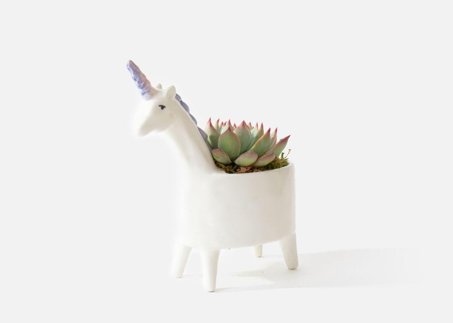 succulent unicorn vase